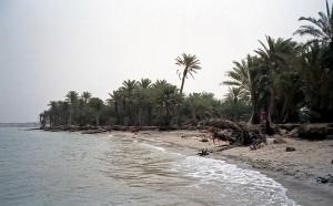 Strand i Jemen