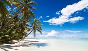 Natur på Kokosöarna