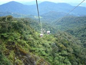 Djungel i Malaysia