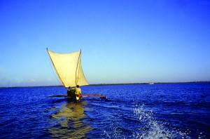 Fiske Moçambiquekanalen