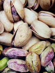 Pistagenötter i Iran