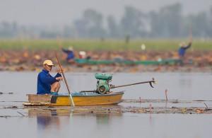 Fiske i Thailand